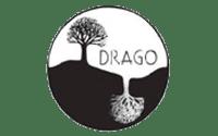 Proyecto DRAGO